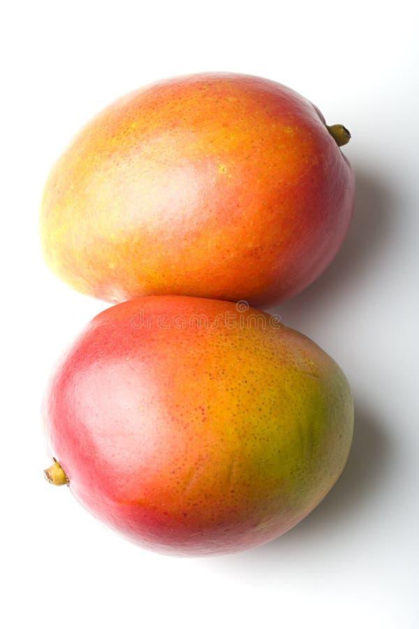 пар мангоа свежих фруктов тропическое сочных зрелое стоковое фото rf