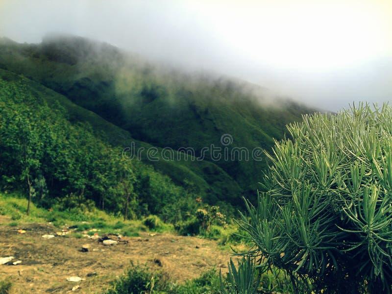 Пасмурная гора стоковая фотография rf