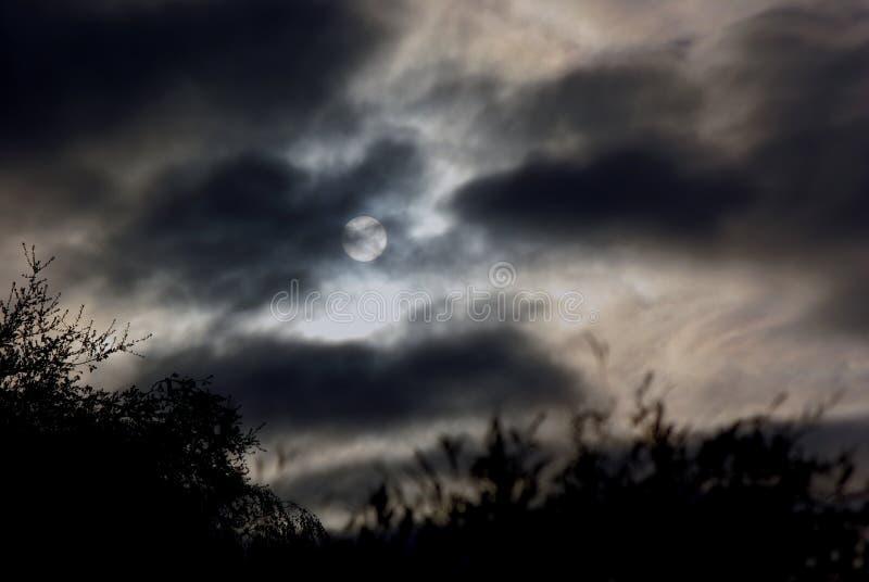 пасмурная ноча полнолуния стоковое изображение rf