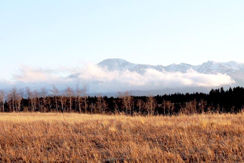 Пасмурный горизонт Колорадо весной стоковое изображение