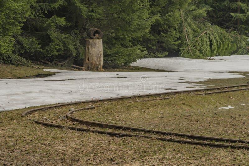 Пасмурный день узкой колеи весной в Grube Tannenberg в горах Krusne стоковые фото