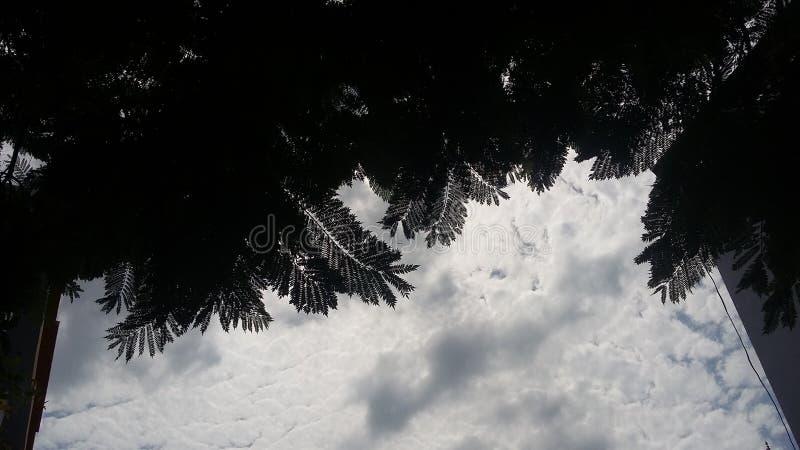 пасмурный день стоковое изображение rf