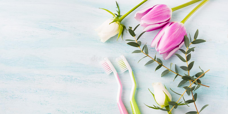 2 пастельных зубной щетки с травами цветков предпосылка красит желтый цвет свежей зеленой весны прачечного белый стоковые изображения rf