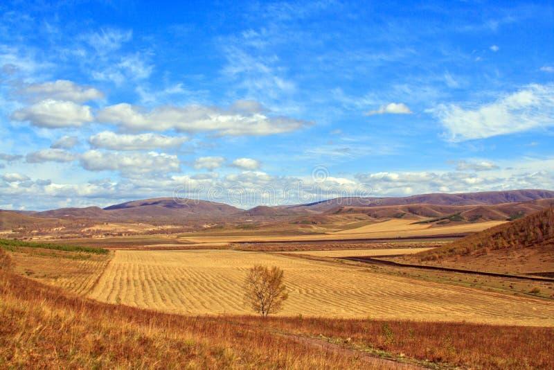 пастырский пейзаж стоковая фотография rf