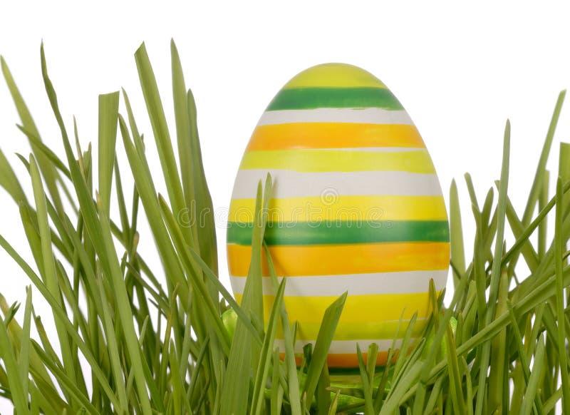Пасхальное яйцо на зеленой траве стоковые фото