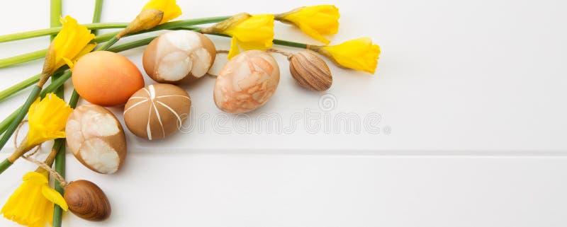 Пасхальные яйца Брайна и желтые daffodils стоковая фотография