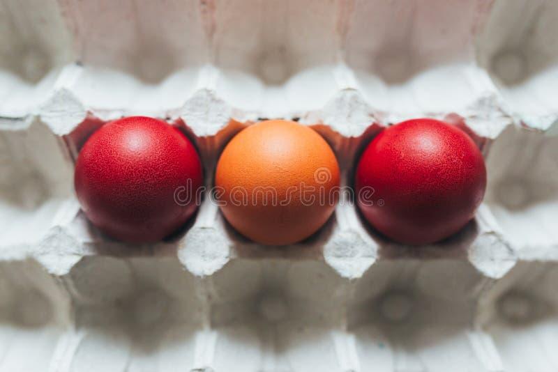 Пасхальные яйца других цветов в подносе стоковые фото