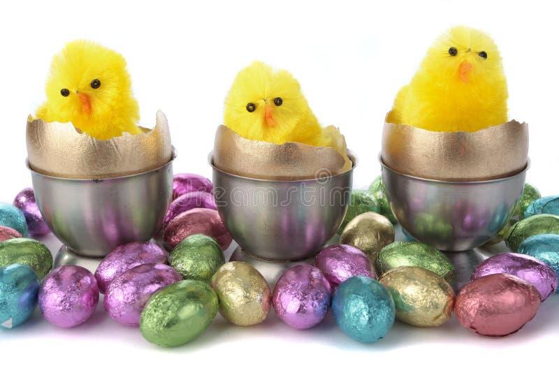 Пасхальные яйца и цыпленоки стоковая фотография rf