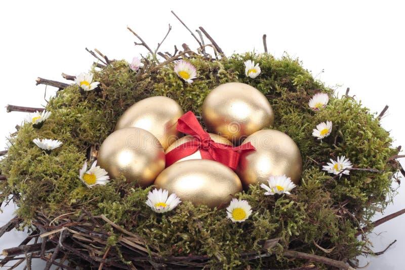 пасхальные яйца птицы гнездятся над белизной стоковая фотография