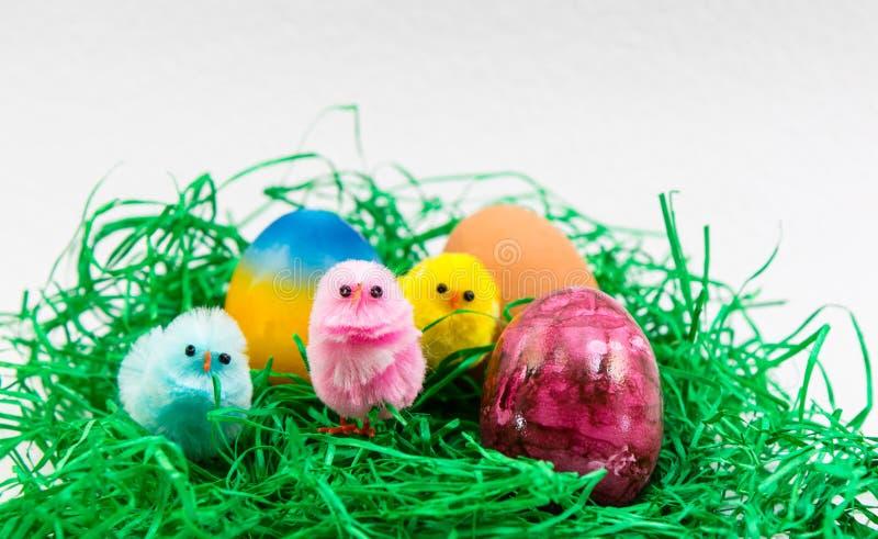 Пасхальное яйцо и маленькие цыпленоки стоковое фото rf