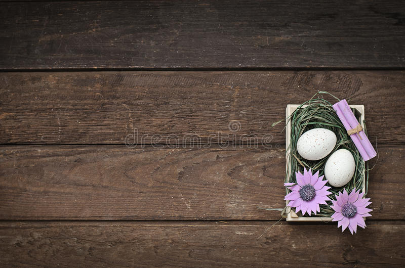 Пасхальные яйца в гнезде (предпосылка) стоковые фотографии rf