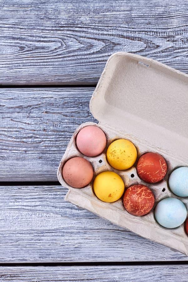 Пасхальные яйца в подносе стоковая фотография rf