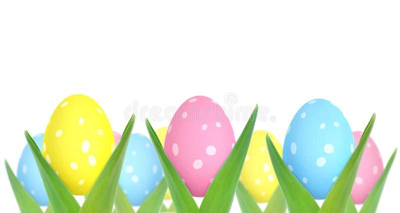 Пасхальные яйца растя от заводов иллюстрация штока
