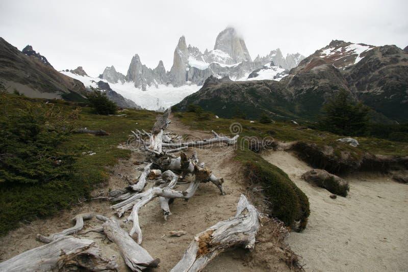 Патагония с горами стоковое фото rf