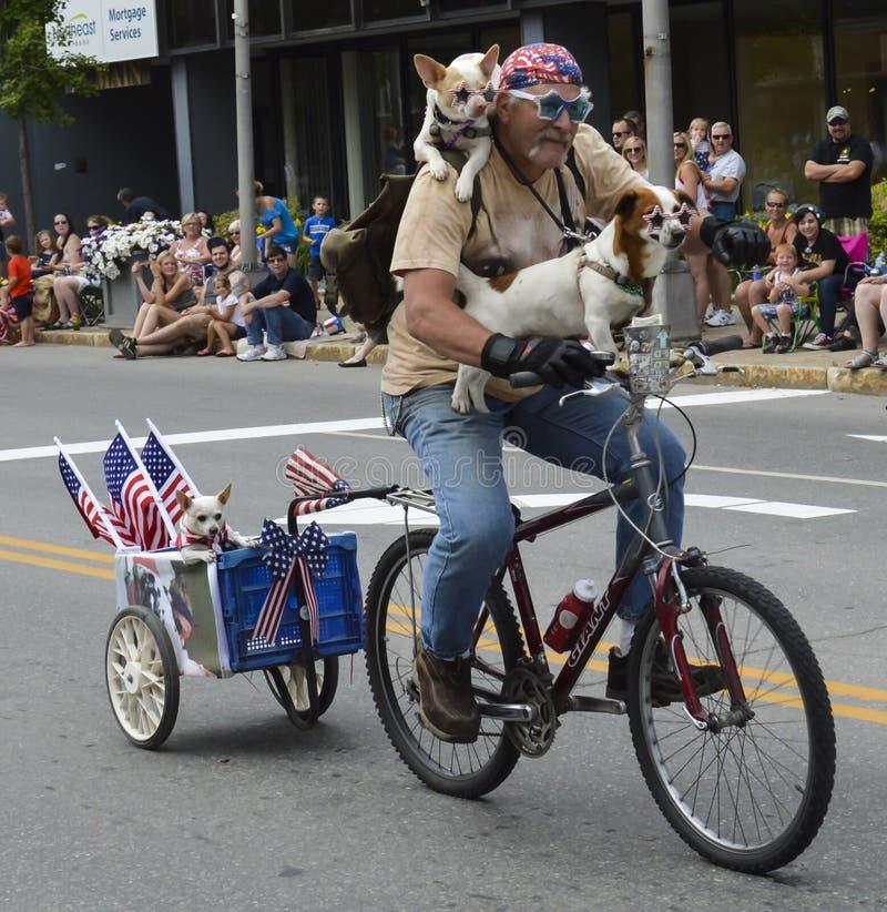Патриотическая езда собак в параде стоковая фотография rf