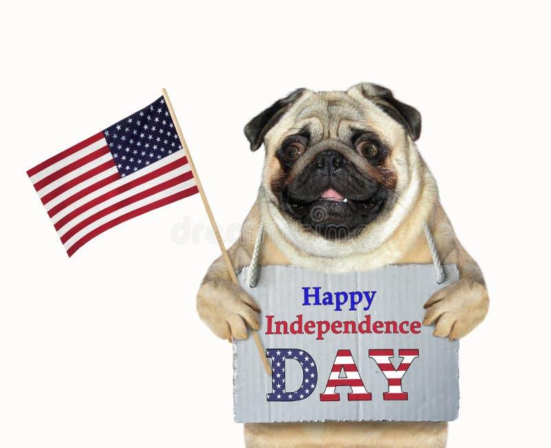 Патриот собаки с флагом 2 стоковые изображения rf
