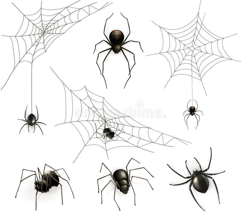 Пауки и сеть паука иллюстрация штока