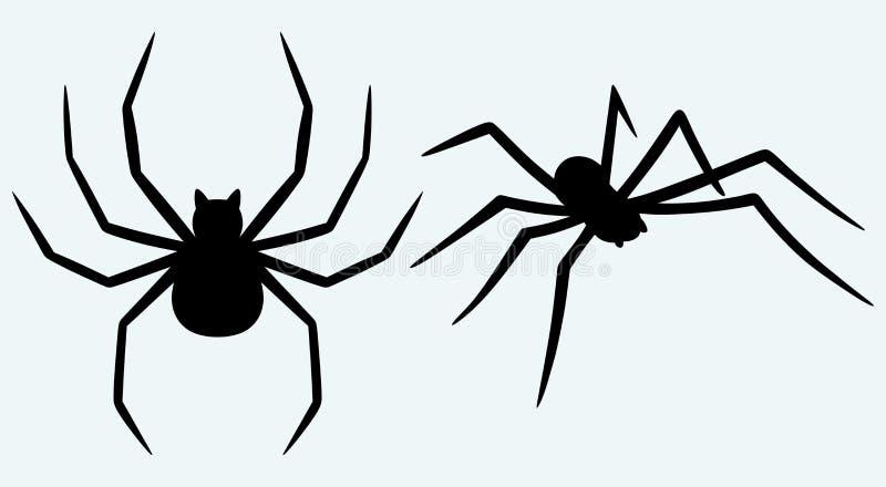 Паук тарантула бесплатная иллюстрация