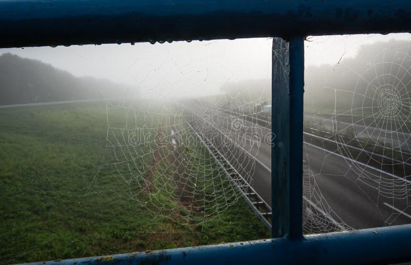 Паутины конца-вверх влажные в перилах эстакады над шоссе стоковые фото