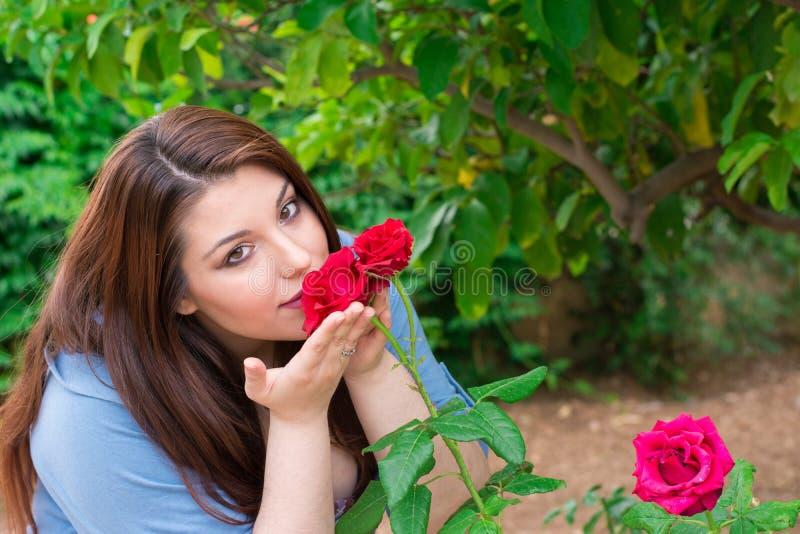 пахнуть роз стоковые изображения