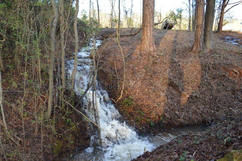 падают древесины york водопада taughannock положения парка горы новые стоковое фото rf