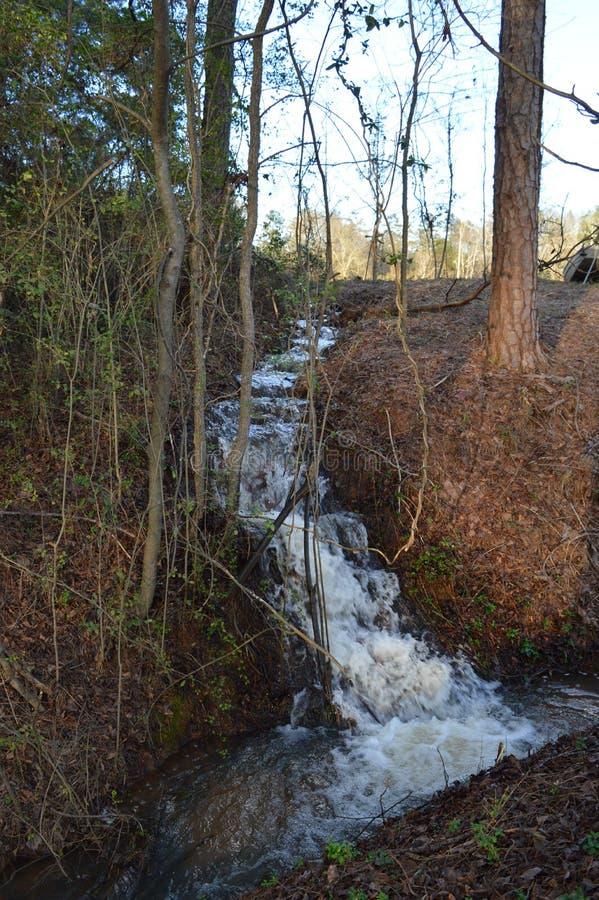падают древесины york водопада taughannock положения парка горы новые стоковые фотографии rf
