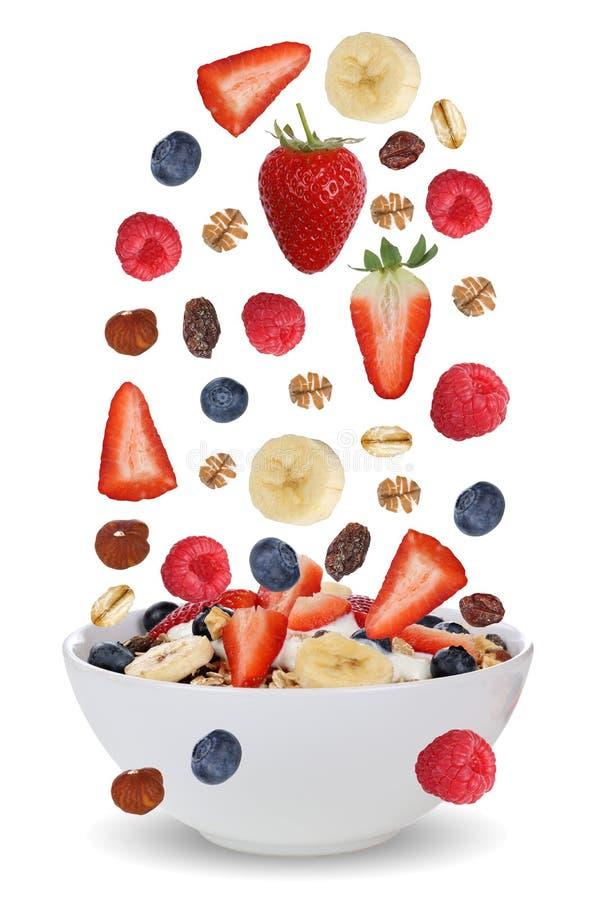 Падая ингридиенты muesli плодоовощ для завтрака в шаре с f стоковые изображения rf