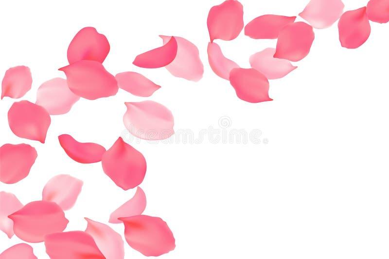 Падая цветение лепестков розы яркое розовое Цветки летания вишни Сакуры реалистический дизайн 3d также вектор иллюстрации притяжк иллюстрация вектора