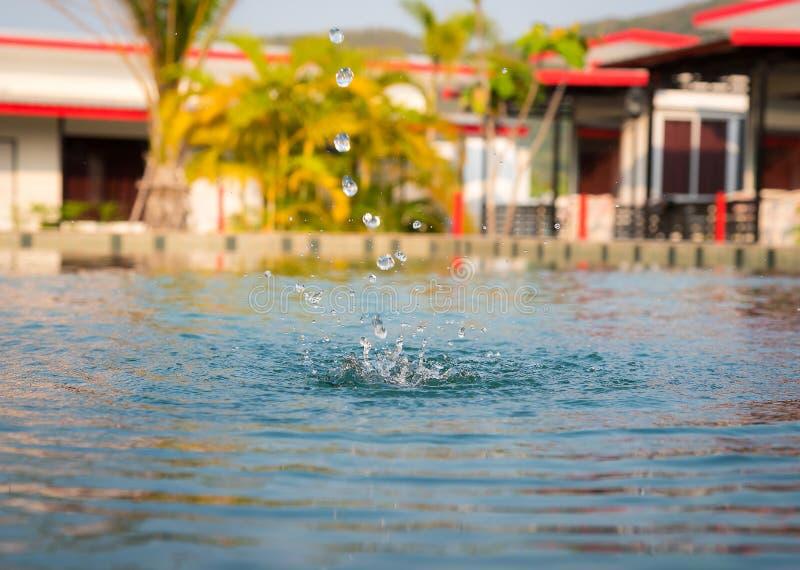 Падение воды на спокойной поверхности стоковое фото