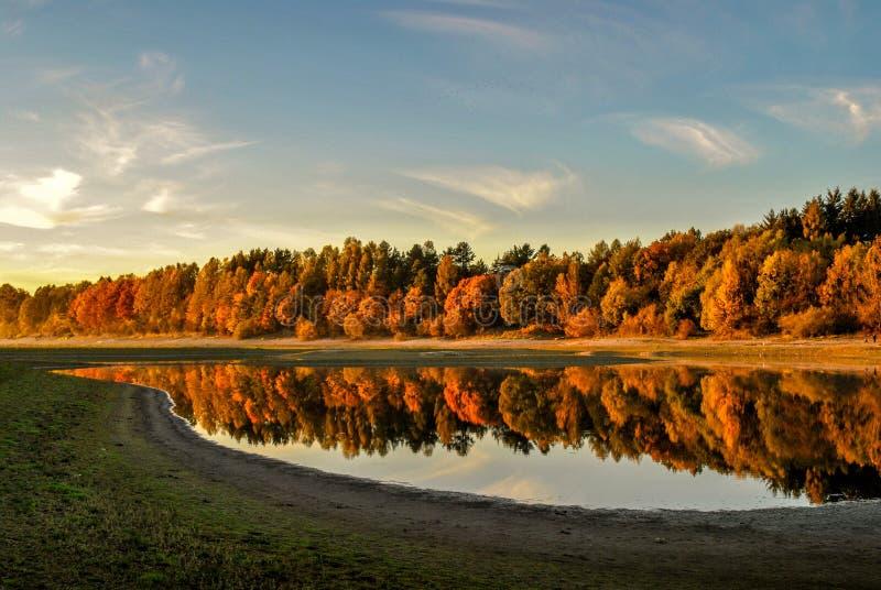 Падение на озеро стоковые изображения rf