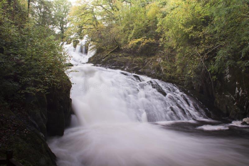 Падения ласточки, Betws-y-Coed, долина Conwy, Snowdonia, Уэльс стоковые фото