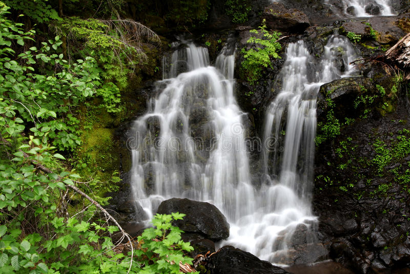 Падения воды Mount Rainier стоковое изображение rf