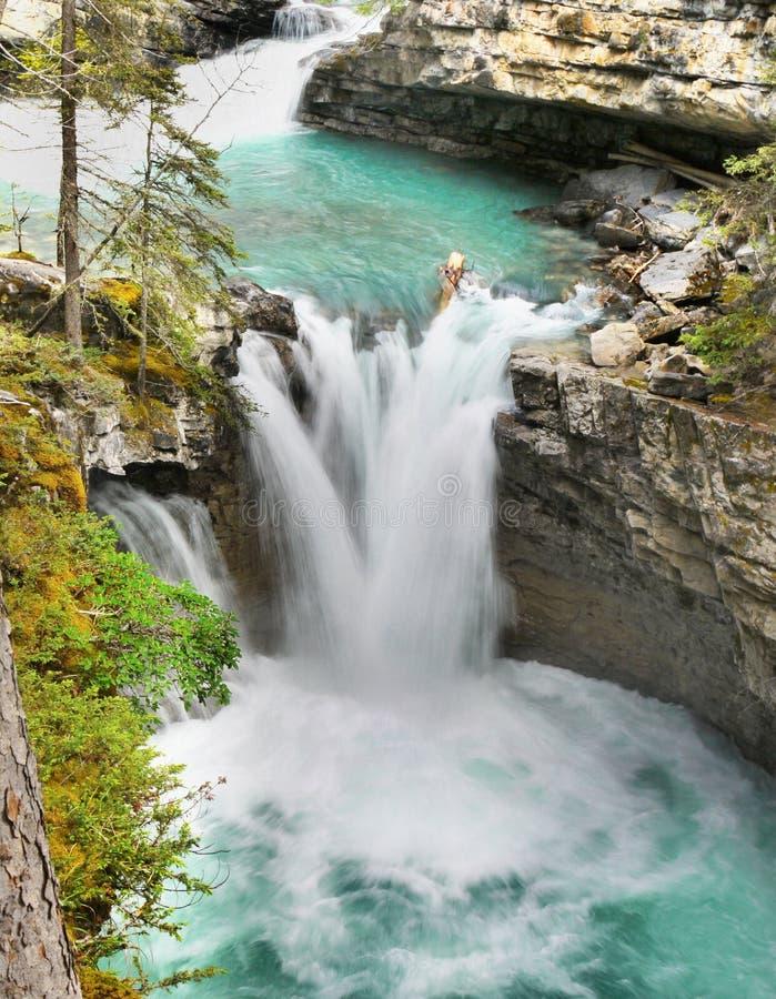 Падения каньона Johnston, Banff NP стоковые изображения