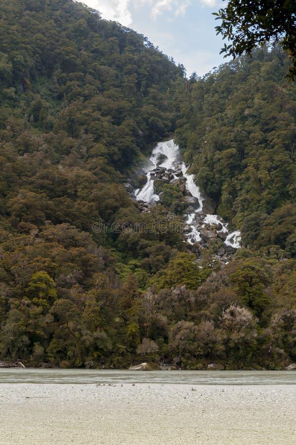 Падения реветь Билли, Новая Зеландия стоковые фотографии rf