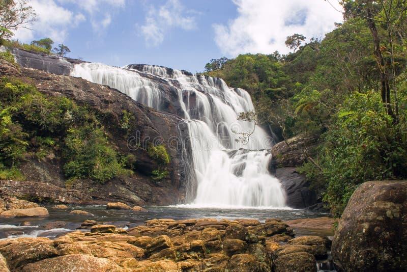 Падения Шри-Ланка хлебопеков стоковое фото
