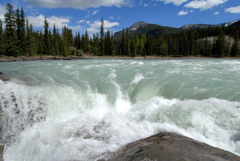 Падения Athabasca, канадские утесистые горы, Канада стоковые изображения rf