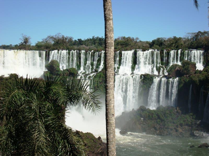 Падения Iguazú стоковое фото rf
