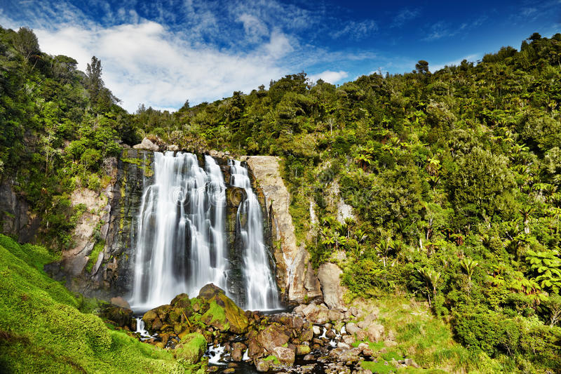Падения Marokopa, Новая Зеландия стоковые фотографии rf