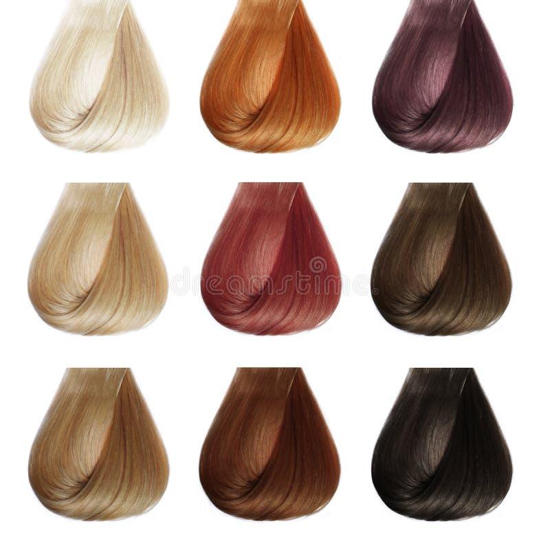 Палитра волос. Комплект цветов. стоковое фото rf