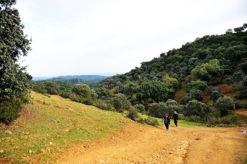 Паломники в Mozarabic Camino de Сантьяго, Cerro Muriano, Cordoba, Испании стоковое фото rf