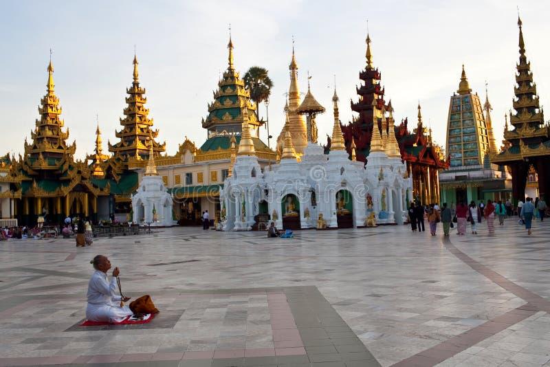 Паломник в пагоде Shwedagon, Бирме стоковая фотография