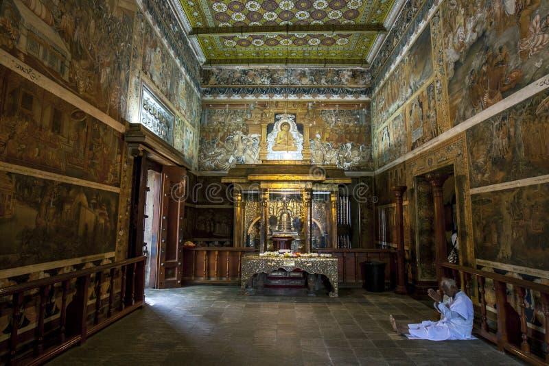 Паломник к радже Maha Vihara Kelaniya в Шри-Ланке молит в комнате святыни стоковое фото