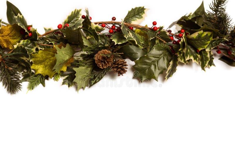 Падуб и зеленые ветви рождества стоковая фотография