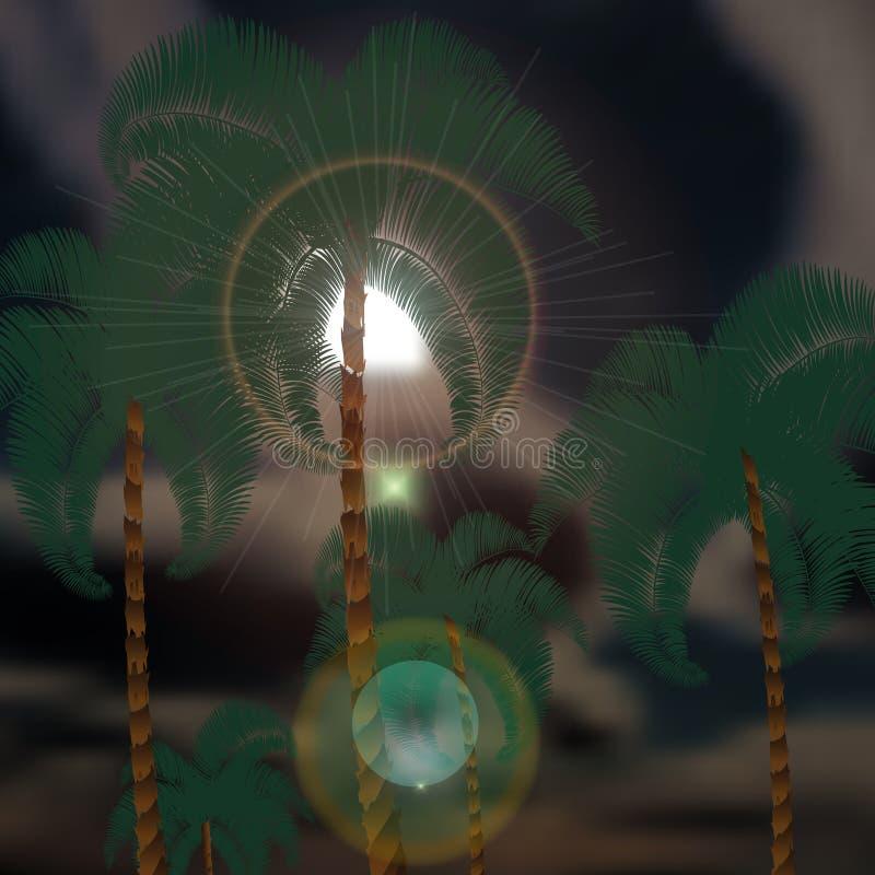 Пальмы на заднем плане thunderclouds Лучи Солнця иллюстрация бесплатная иллюстрация