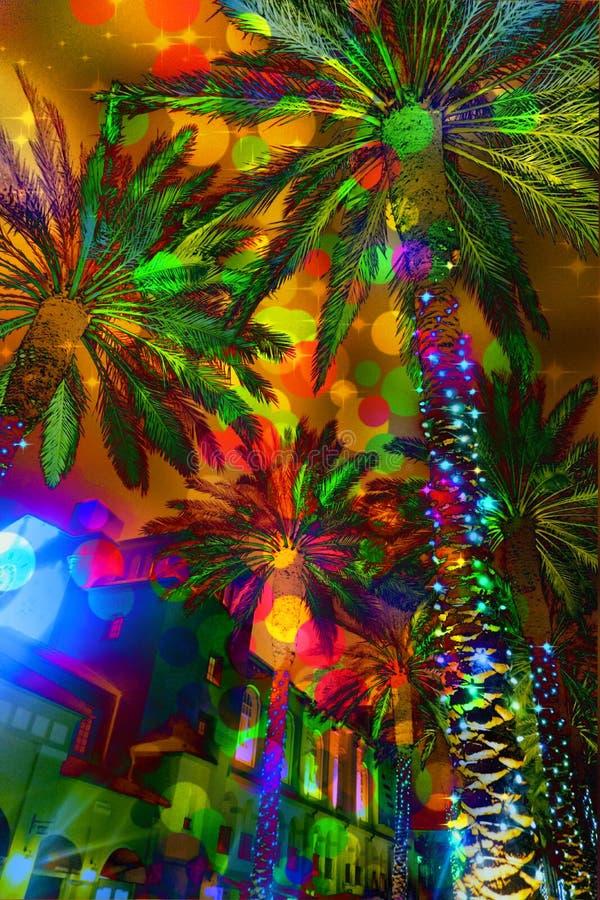 Пальмы праздничных светов абстрактные стоковое фото rf