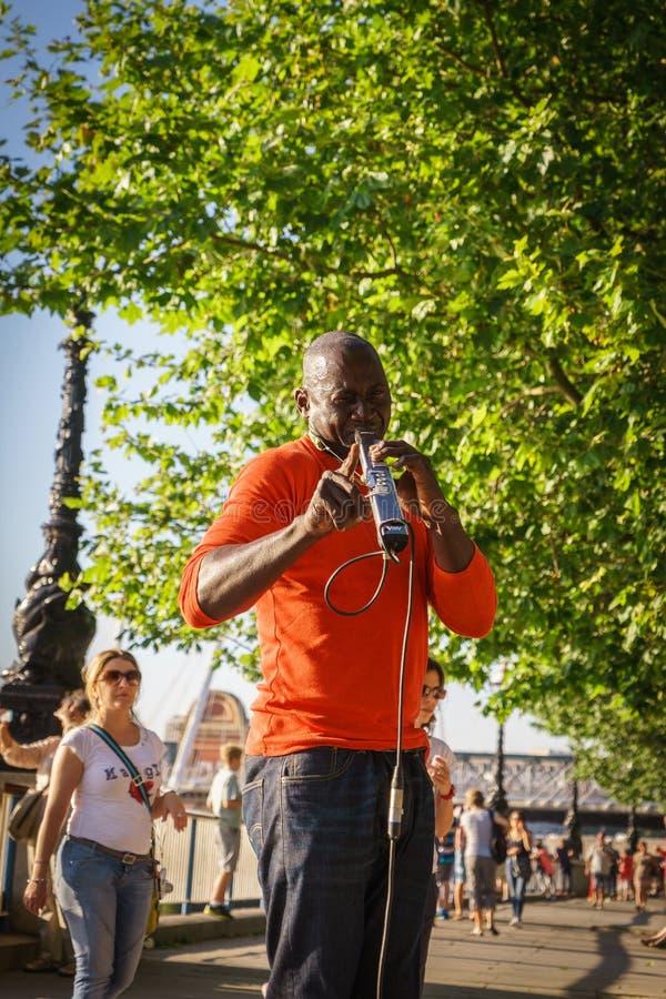 Певица музыканта улицы стоковые фотографии rf