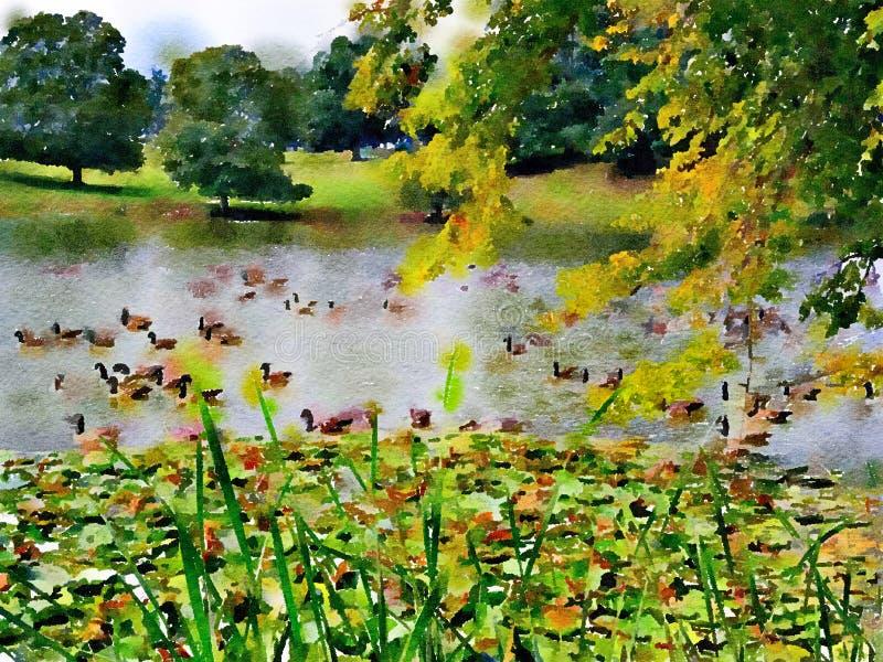 Пейзажная живопись Watercolour гусынь Канады на озере иллюстрация штока