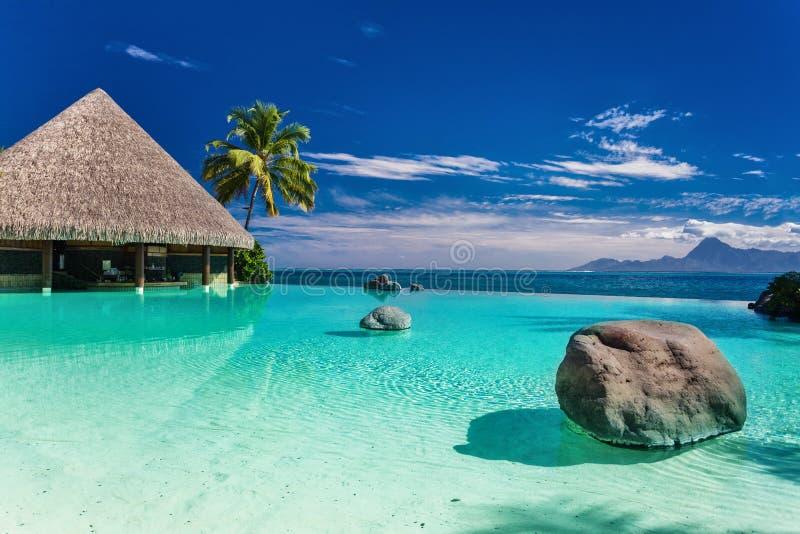 Пейзажный бассейн с пальмой трясет, Таити, Французская Полинезия стоковая фотография rf