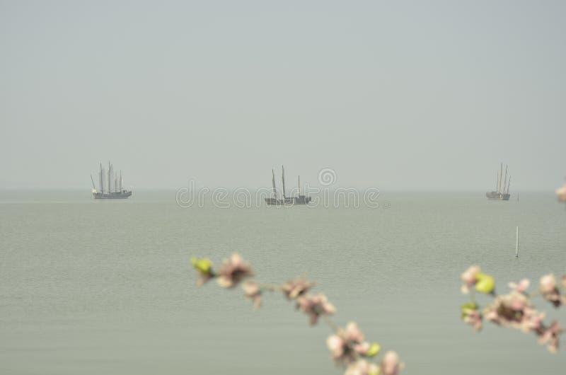 Пейзаж весны озера Taihu на Wuxi, Китае стоковое изображение