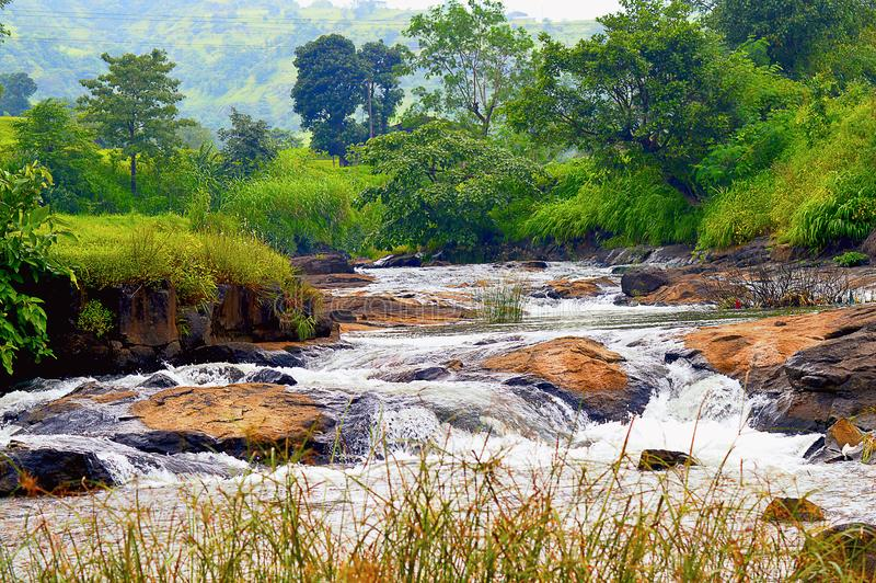 Пейзаж водопада около Bhimashankar стоковые изображения rf